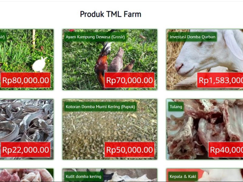 Pembuatan Website TML Farm
